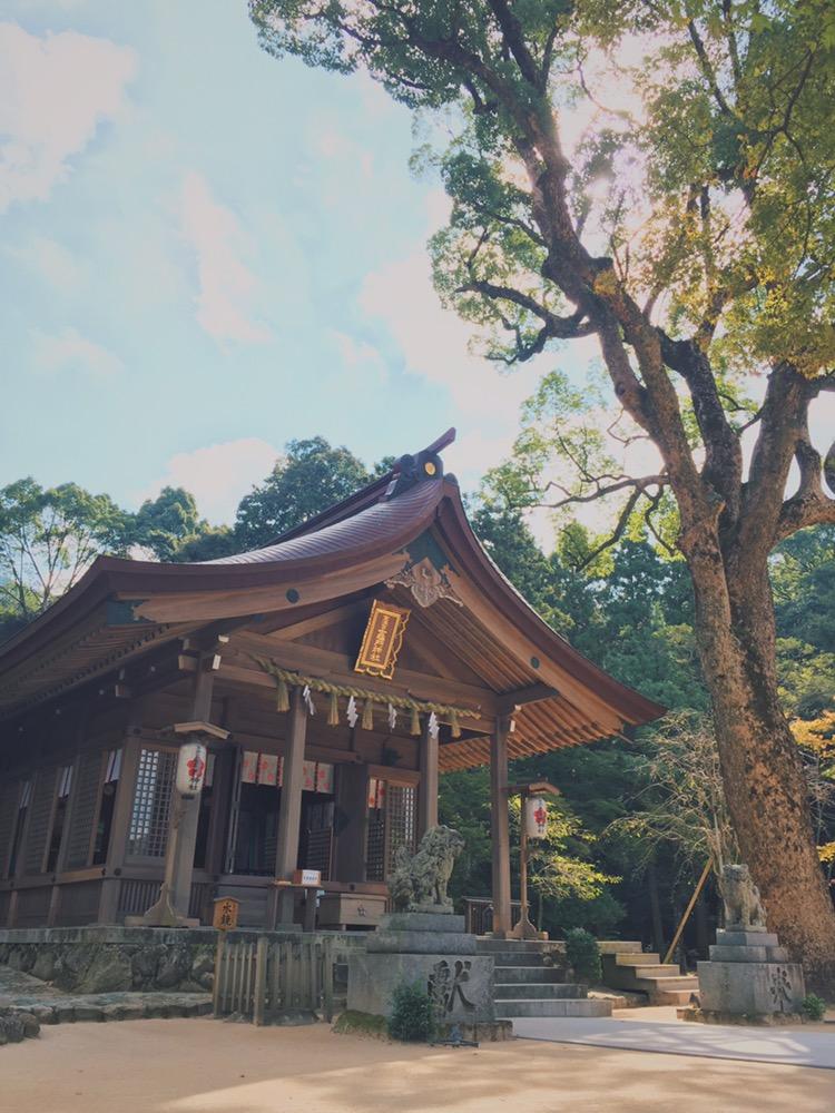 奉納 神社